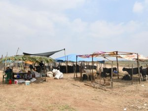 Sarıçam'da kurban satış ve kesim alanları belirlendi
