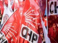 CHP Adana İl Kadın Kollarına Mine Donma da Talip